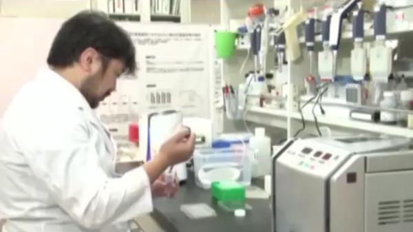 神戸医科大で水素の研究